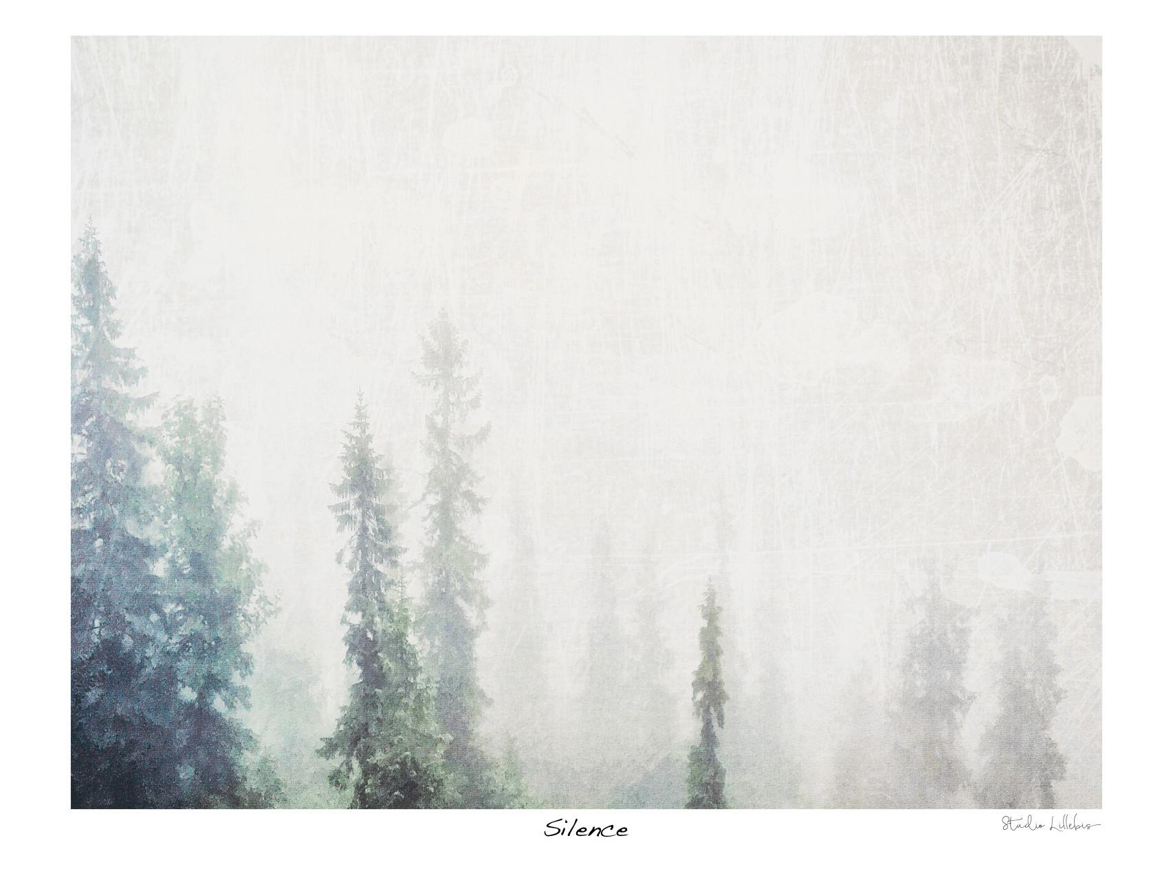 Silence-40x30